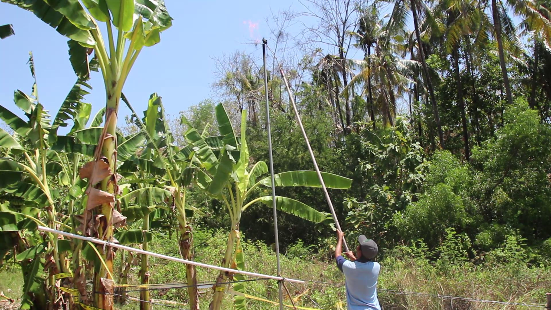 Photo of Semburan Gas Setinggi 5 Meter Muncul di Grobogan Saat Warga Buat Sumur Bor