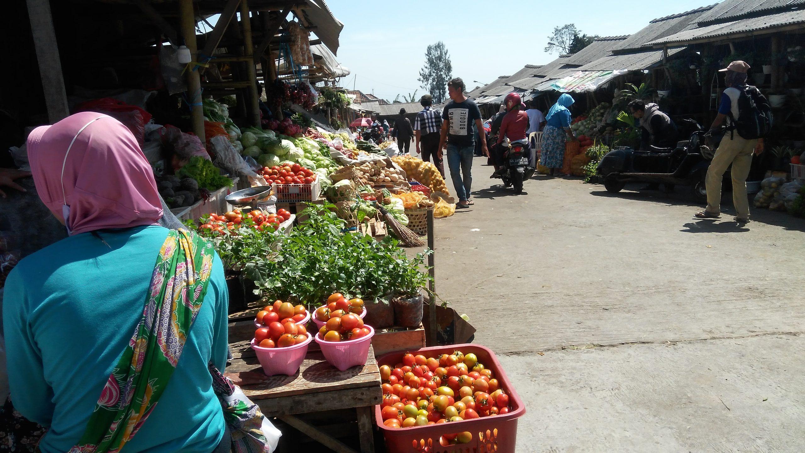 Photo of Didominasi Wisatawan Lokal, Pasar Buah Melati Kopeng Kembali Menggeliat