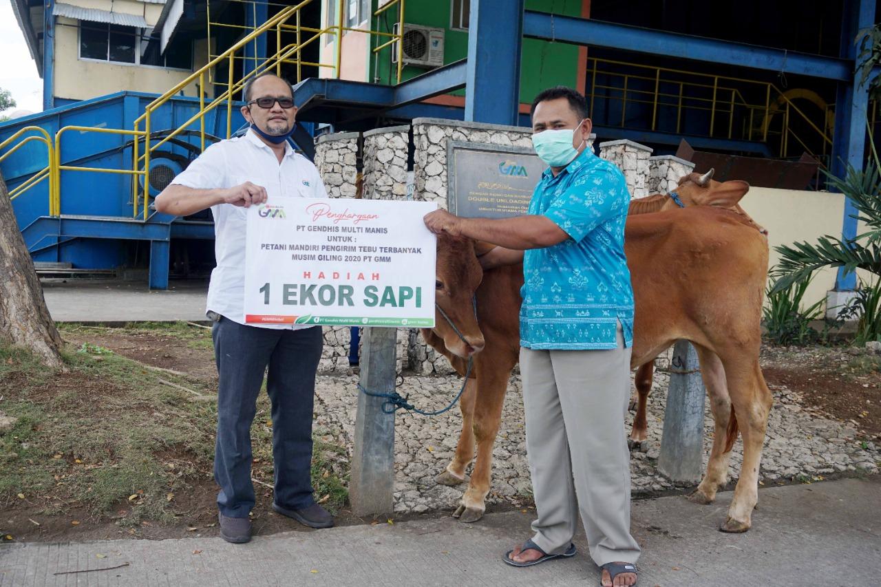 Photo of Tutup Giling, PT GMM Serahkan Bantuan Ternak Sapi ke Petani Tebu