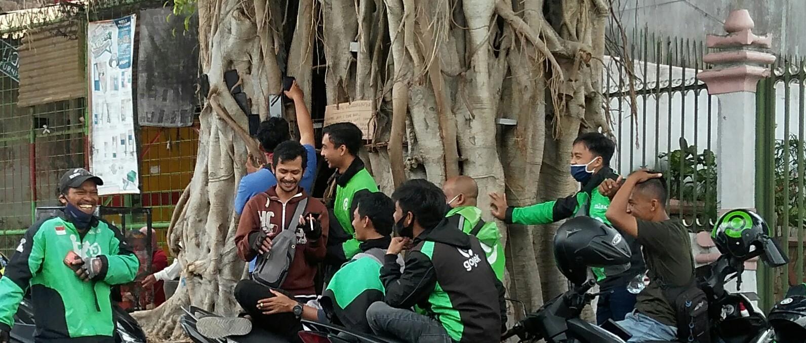 Photo of Ada-ada Saja, Ojol di Salatiga 'Berebut' Orderan Gofood dengan Pasang HP di Pohon
