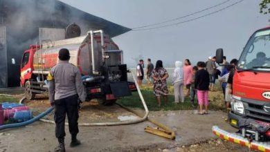 Photo of Kandang Ayam Terbakar, Pemilik Rugi Milyaran Rupiah