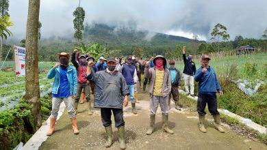 Photo of Petani di Lereng Gunung Slamet Banyak yang Belum Tahu Para Calon Bupati