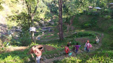 Photo of Kerusakan Hutan Picu Sedimentasi Sungai di Purbalingga