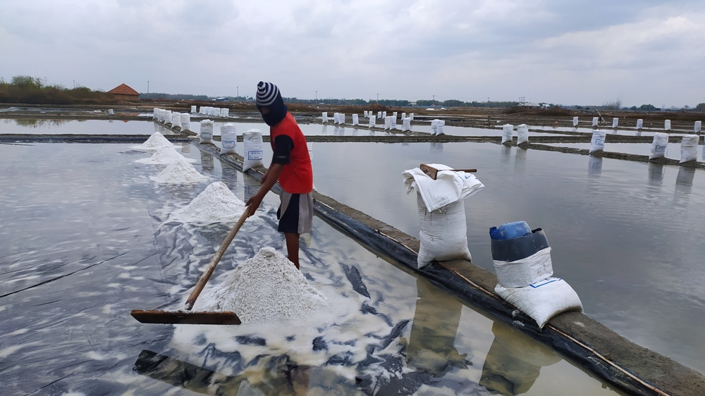 Photo of Harga Anjlok, Petani dan Penggarap Tambak Garam Di Rembang dan Pati Mengeluh