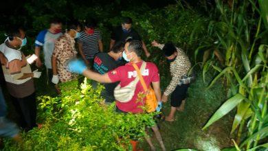 Photo of Pamit Cari Rumput, Kakek Mahyono Ditemukan Tewas di Kebun Cabai