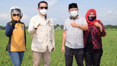 Photo of Gubernur Jabar Ridwan Kamil Tinjau Lokasi Masjid Seribu Bulan di Purwokerto
