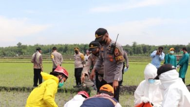 Photo of Jebakan Tikus Beraliran Listrik Makan Korban 10 Orang