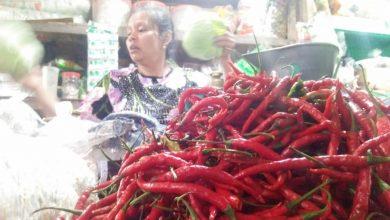 Photo of Harga Cabai di Kota Pekalongan Cenderung Stabil