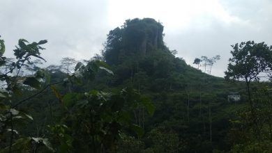 Photo of Sejumlah Gunung Purba di Kulon Progo Bakal Disulap Jadi Destinasi Wisata