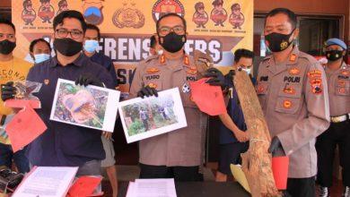 Photo of Polisi Tangkap Pelaku Penebangan Liar di Obyek Wisata Batu Seribu