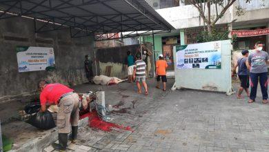Photo of UMP Purworejo Bagikan Daging Qurban ke Warga Isoman dan Warga Terdampak PPKM Darurat