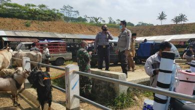 Photo of Jelang Idul Adha, Tim Satgas Covid-19 Pantau Penerapan Prokes di Pasar Hewan Sapuran