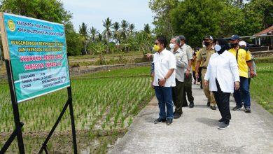 Photo of Anggota DPR RI Panggah Susanto : Pertanian Kunci Utama Bangkitkan Ekonomi Akibat Pademi