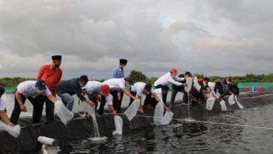 Photo of Pertamina Salurkan Bantuan Budidaya Udang Vaname di Cilacap