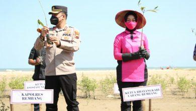 Photo of 8.250 Pohon Mangrove Ditanam I Pantai Rembang