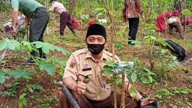 Photo of Ribuan Bibit Kopi Ditanam untuk Konservasi Hutan Pinus